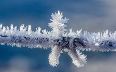 Winterdip natuurlijk verhelpen!